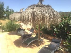 Sonnenschirme-Pool